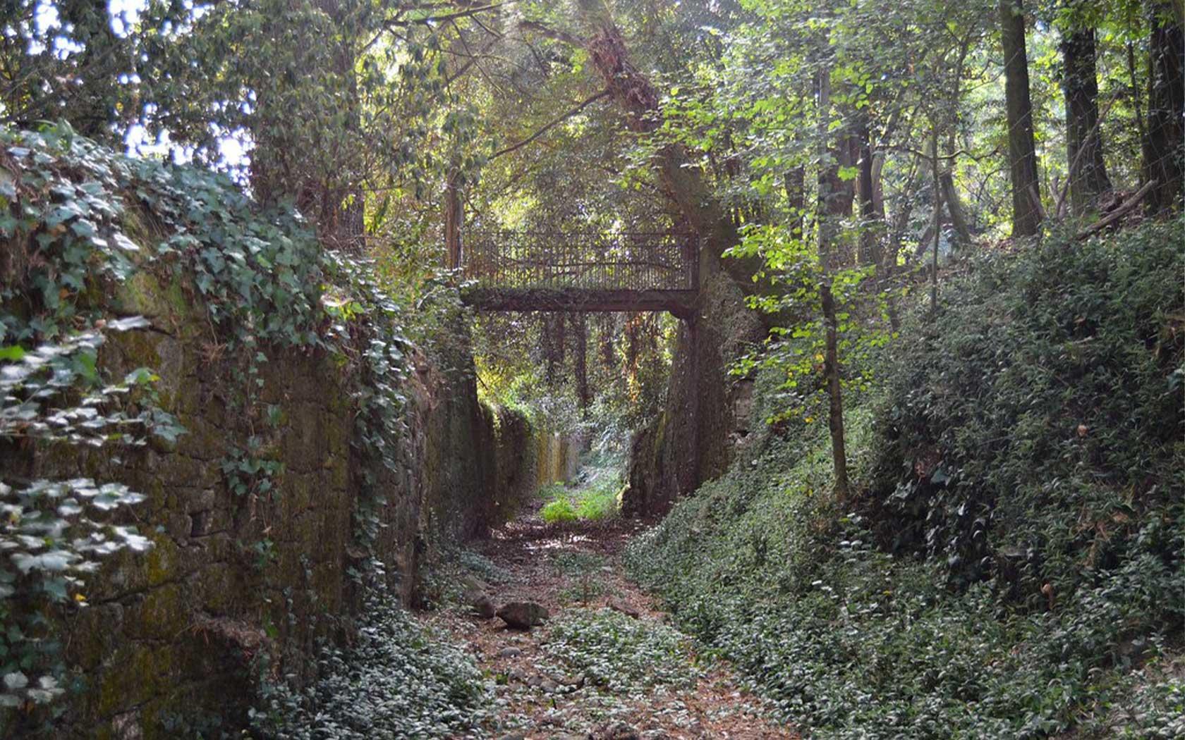 Quinta do Paico - Pedro Nuno Caetano